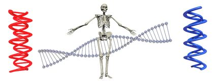 El símbolo de la DNA en él aisló en el fondo blanco - representación 3d Fotografía de archivo