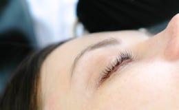 El ` s de la mujer del primer azota después del procedimiento de la laminación del latigazo Tratamiento de la belleza Ojo del pri foto de archivo