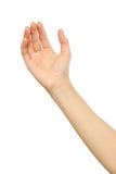 El ` s de la mujer estiró la mano con la palma abierta imagen de archivo