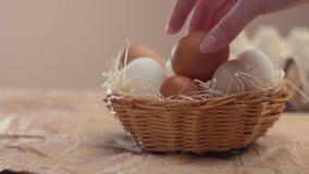 El ` s de la mujer hant puso un huevo a la cesta otras almacen de video