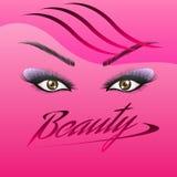 El ` s de la mujer observa con las cejas perfectamente formadas y los latigazos completos con maquillaje intenso ilustración del vector