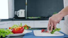 El ` s de las mujeres da cortar la pimienta roja dulce y el bróculi verde para la ensalada en tabla de cortar almacen de metraje de vídeo