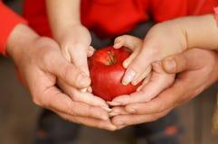 El ` s de los hombres, el ` s de las mujeres y las manos del ` s de los niños sostienen la manzana foto de archivo