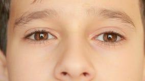 El ` s del pequeño niño observa, inocencia, globos del ojo, vista delantera primer, un tic nervioso metrajes