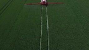 El salpicar del trigo Cantidad de la antena del abejón metrajes