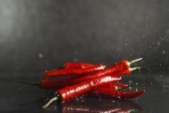El salpicar frío rojo de las pimientas Fotografía de archivo
