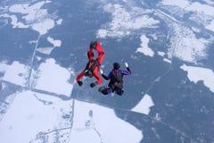 El saltar en caída libre del invierno Dos skydivers están entrenando en el cielo foto de archivo