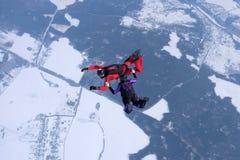El saltar en caída libre del invierno Dos skydivers están entrenando en el cielo fotos de archivo libres de regalías