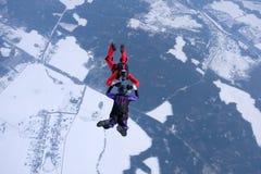 El saltar en caída libre del invierno Dos skydivers están entrenando en el cielo fotografía de archivo