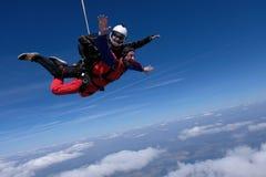 El saltar en ca?da libre en t?ndem Dos hombres felices están en el cielo foto de archivo libre de regalías