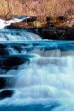 El salto de color salmón Imágenes de archivo libres de regalías