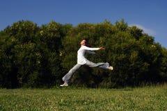 El salto de la muchacha Fotos de archivo