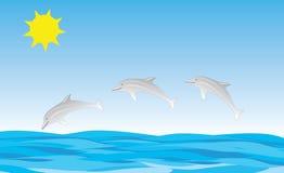 El salto de los delfínes libre illustration