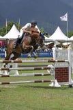 El salto del caballo Fotografía de archivo libre de regalías