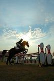 El salto del caballo fotografía de archivo