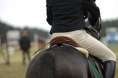 El salto del caballo Imagen de archivo libre de regalías