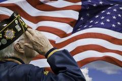 El saludar del veterano Foto de archivo libre de regalías