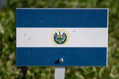 El salvador flag isolated on green grass. Background stock images