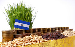 El Salvador flag waving with stack of money coins and piles of wheat. And rice seeds stock photo