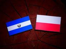 El Salvadoran flag with Polish flag on a tree stump isolated. El Salvadoran flag with Polish flag on a tree stump royalty free illustration