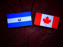 El Salvadoran flaga z kanadyjczyk flaga na drzewnym fiszorku odizolowywającym fotografia royalty free