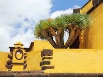 El San Tiago Fortress en Funchal Fotografía de archivo libre de regalías