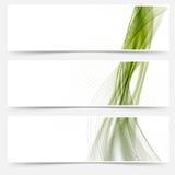 El satén verde alinea la colección de los pies de página del web Fotografía de archivo
