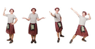 El scotsman divertido aislado en blanco Foto de archivo libre de regalías