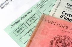 El seguro auto organiza Foto de archivo libre de regalías