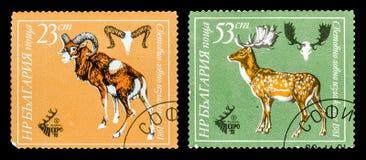 El sello Imágenes de archivo libres de regalías