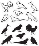 El sentarse de los pájaros de la silueta Fotografía de archivo libre de regalías