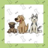 El sentarse de 3 perros Imagen de archivo libre de regalías