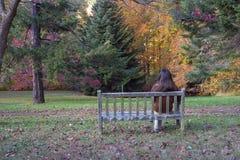 El sentarse en el banco Imagenes de archivo