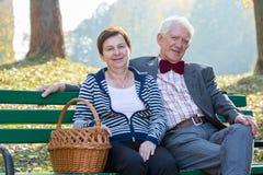 El sentarse en un banco de parque Imágenes de archivo libres de regalías