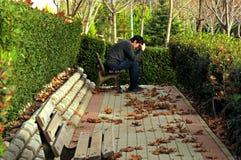 El sentarse solamente en el parque en jóvenes tristes del otoño Imagenes de archivo
