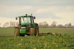 El seto verde moderno del tractor que corta los años pasados cosecha Fotos de archivo