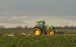 El seto verde moderno del tractor que corta los años pasados cosecha Imagen de archivo