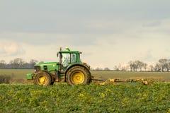 El seto verde moderno del tractor que corta los años pasados cosecha Fotos de archivo libres de regalías