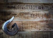El Shofar - pegue la trompeta del cuerno del ` s Foto de archivo