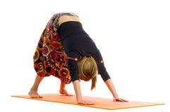 El shvanasana del mukha de Adho, una posición en yoga, también se llama perro boca abajo Fotografía de archivo