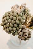El sistema de anillos de oro de la boda en ramo gris florece en florero estilo rústico, fondo beige Fotos de archivo