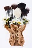 El sistema de cepillos del maquillaje embaló en papel con las manzanillas Foto de archivo