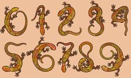 El sistema de diez números le gusta lagartos Fotografía de archivo libre de regalías