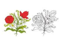 El sistema de esquema y de vintage coloreado florece el ramo o el modelo Foto de archivo libre de regalías