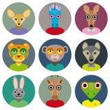 El sistema de iconos del círculo de las caras de los animales fijó en estilo plano de moda zoo Imagenes de archivo