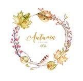 El sistema de la acuarela roja y amarilla del otoño se va y las bayas, decoración dibujada mano de los elementos del follaje del  Foto de archivo libre de regalías
