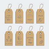El sistema de la etiqueta del alimento biológico y la etiqueta autoadhesiva diseñan elementos libre illustration