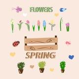 El sistema de la primavera florece en un fondo rosado ilustración del vector