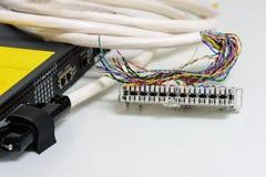 El sistema de la telefonía del IP, el panel de remiendo del cableado de teléfono con los cables de los pares trenzados para el te Imagen de archivo libre de regalías