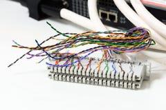 El sistema de la telefonía del IP, el panel de remiendo del cableado de teléfono con los cables de los pares trenzados para el te Imagenes de archivo